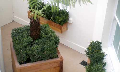 Iroko window boxes & large contemporary planters