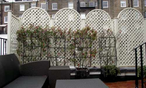 Domed top trellis