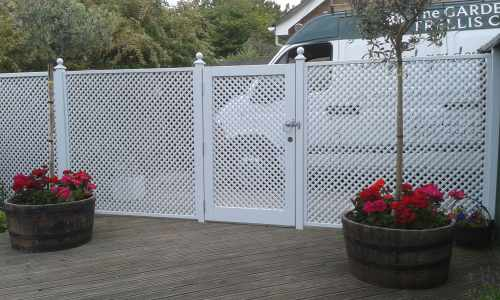 Trellis Fencing and Gate