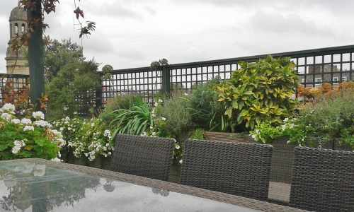Terrace top trellis