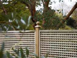 Privacy solutions for your garden