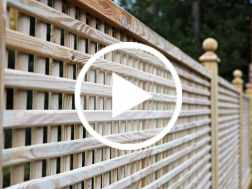 Our Guide to Trellis