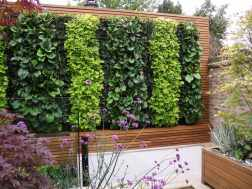 5 reasons why you should cover your house in trellis